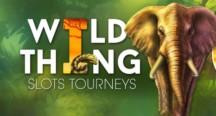 Win $500 in the Wild Thing Slots Tournament at Downtown Bingo