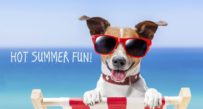 New Slots for August, Freebie Spins and More for Hot Summer Wins!
