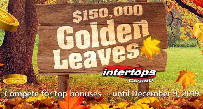 Thanksgiving Adult Entertainment at Intertops Casino includes $150,000