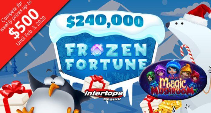 $240,000 Frozen Fortune C-c-casino Bonus C-c-contest at Intertops