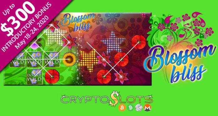 Cryptoslots' New Blossom Bliss is an Extra-Large Slot Game
