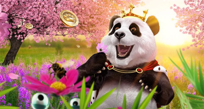 Enjoy Sweet Free Spins in Royal Pandas May Blossoms Promotion